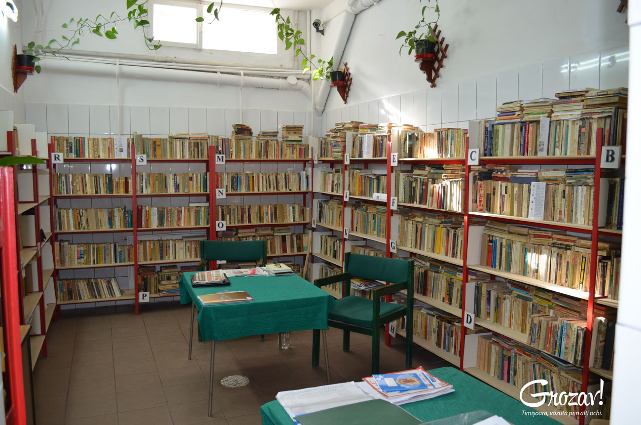 grozav-popa-sapca-timisoara-biblioteca