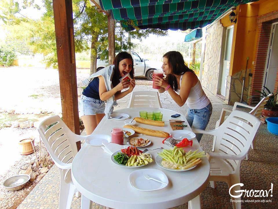 Iulia-Grumeza-Preconceptii-despre-vegetarieni-Timisoara